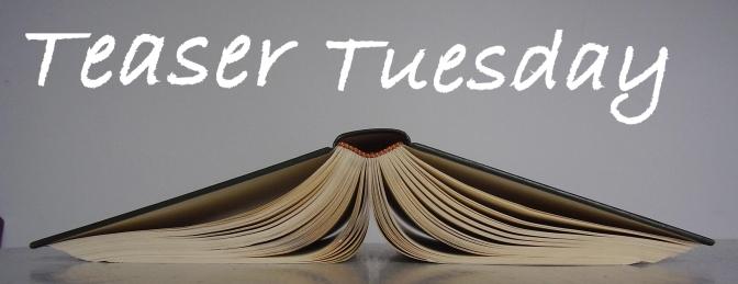 (Cheater) Teaser Tuesday